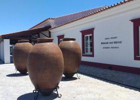 Alentejo winery