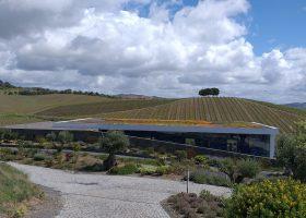 Winery Vidigueira