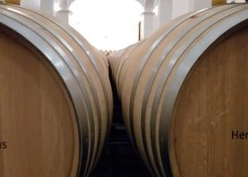 Wine Tours Estremoz